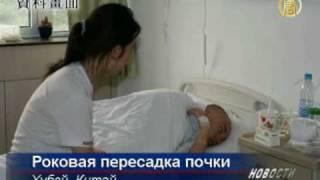 Смерть после пересадки почки заключенного