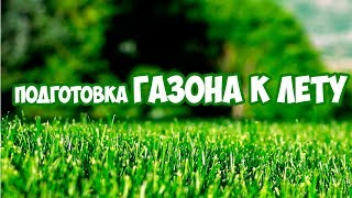 Уход за газоном в начала лета 🌱  Сад огород 🌱 Газонная трава(, 2018-06-05T10:00:01.000Z)