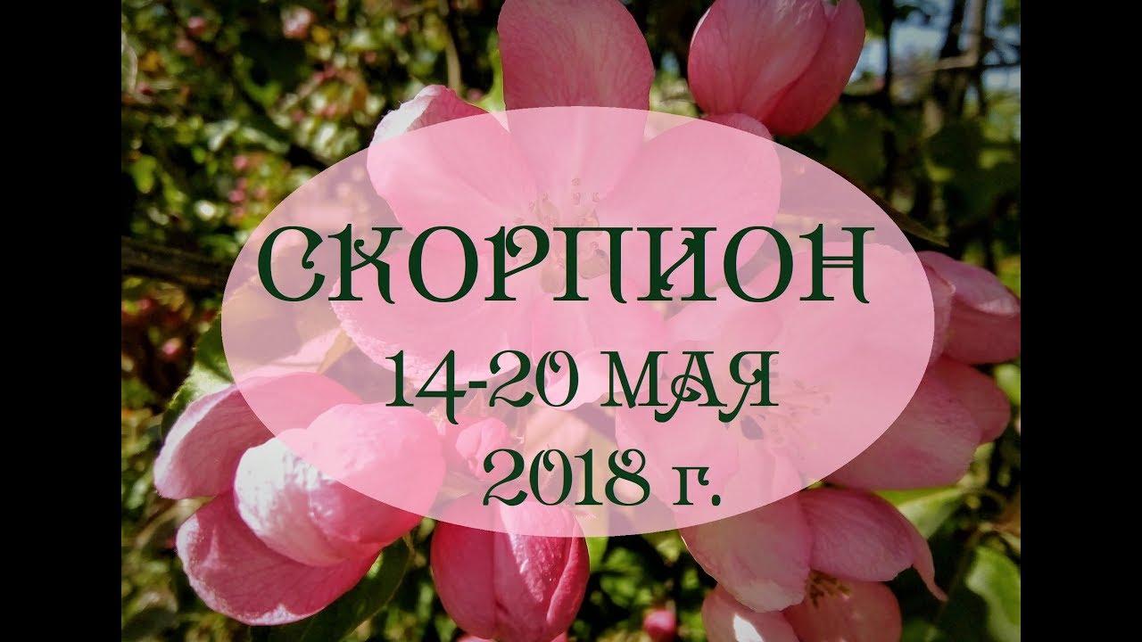 СКОРПИОН.Таро гороскоп с 14 по 20 мая 2018г. Онлайн гадание.
