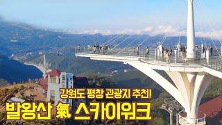 강원도 평창 관광지 추천! '발왕산 氣 스카이워…