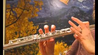 Yamaha 874 Professional Flute For Sale (Used) - Response Demo