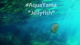Jellyfish on Mallorca - by Yamapama