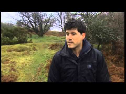 The Courier - Seth Lakeman | Shazam