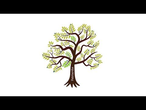 The olive tree of Israel