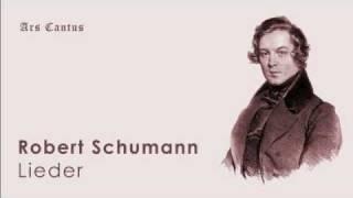 Schumann - Frauenliebe und -Leben, op. 42 no. 8, Nun hast du mir den ersten Schmerz getan.wmv