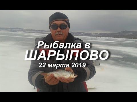 Рыбалка в Шарыпово 22 марта 2019