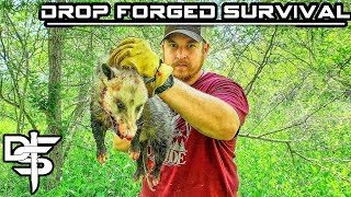 12 Day Budget Survival Challenge - Day 4 - Catch and Cook Possum
