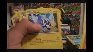 600+ Pokemon eBay Card Lot!