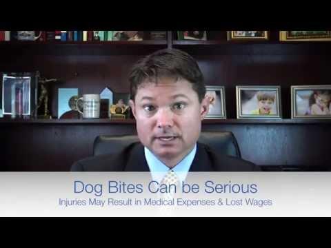 Louisville Dog Bite Attorney Chris Haden