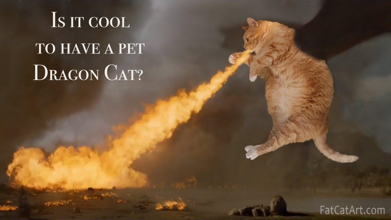Game Of Thrones Fat Cat