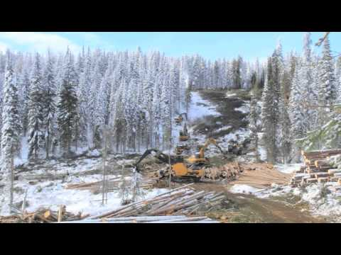 Caterpillar Forest Products - West Coast Logging