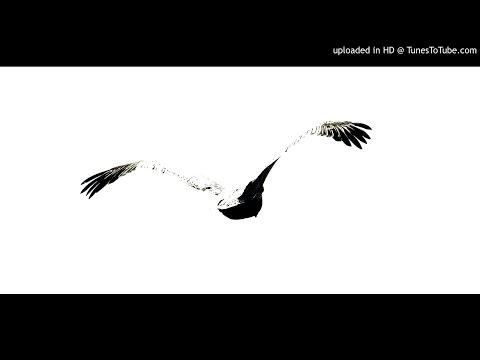 Cesar Martinez Ensemble - Sem Tensao