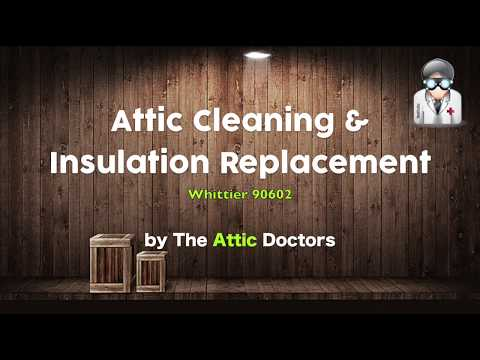 Total Attic Cleaning and Insulation Replacement-Insulation Contractor Orange County