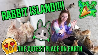 EXPLORING JAPANS RABBIT ISLAND!! Everything you need to know about Okunoshima (BUNNY ISLAND!!)