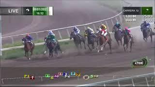 Vidéo de la course PMU PRIX WINDY BAY