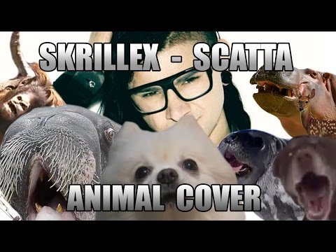 Skrillex - Scatta (Animal Cover)