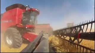 Canada Harvest Case IH *GoPro HD* 2012 Hengerer Farms