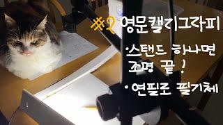 [영문캘리그라피] 필기체/ calligraphy/ 고양…