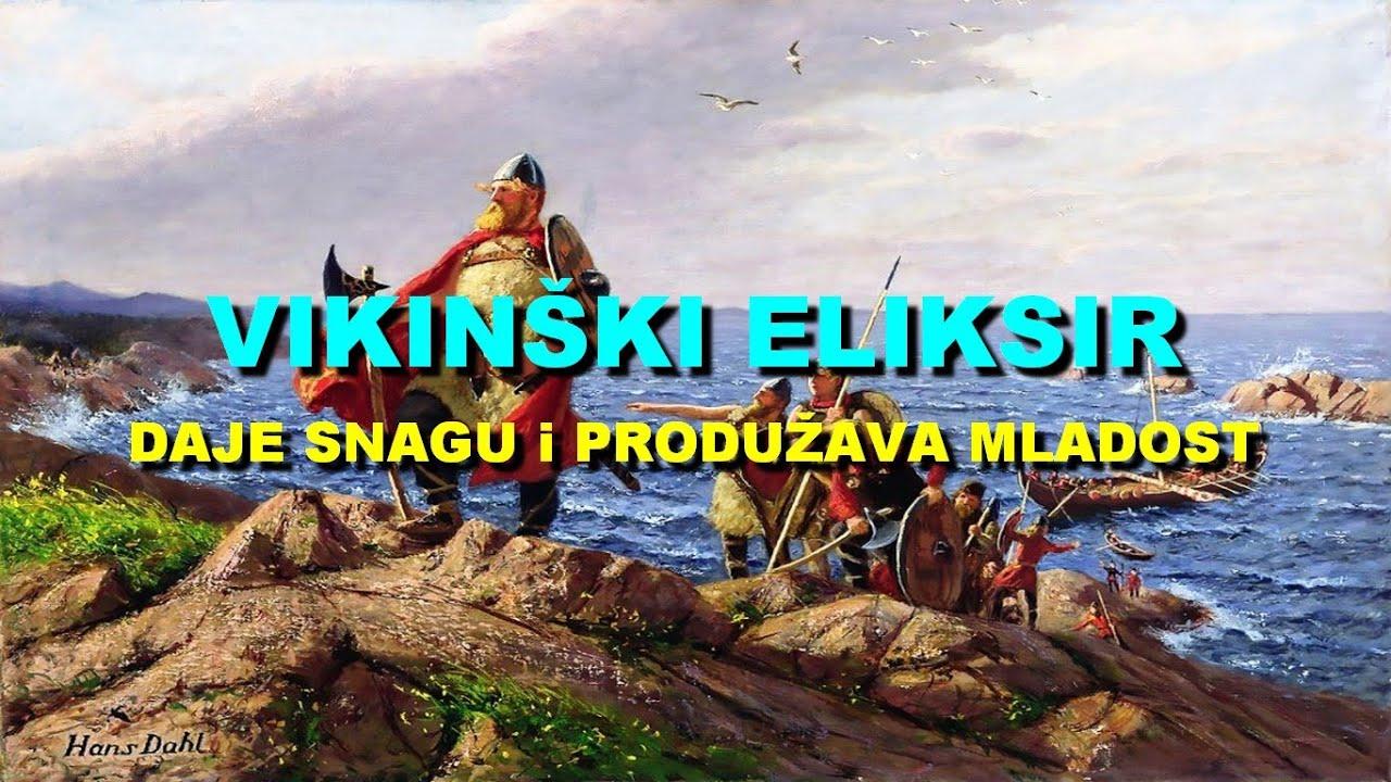 VIKINŠKI ELIKSIR - DAJE SNAGU i PRODUŽAVA MLADOST