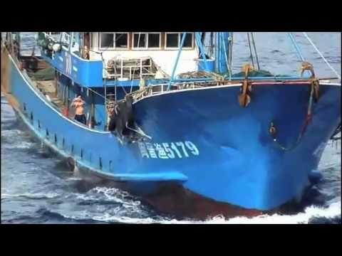 尖閣ビデオ流出 別の巡視船からも衝突確認 Senkaku