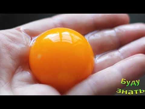 Желтки яиц  - Вред или Польза