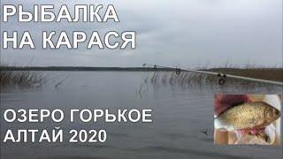 РЫБАЛКА на КРУПНОГО КАРАСЯ озеро ГОРЬКОЕ Тюменцевский район АЛТАЙ 01.05.2020 Барнаул Открываем сезон