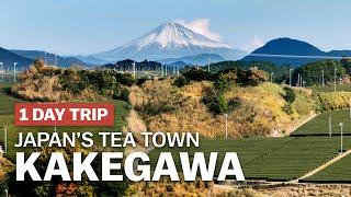 Exploring Japan's Tea Town, Kakegawa in Shizuoka | japan-guide.com