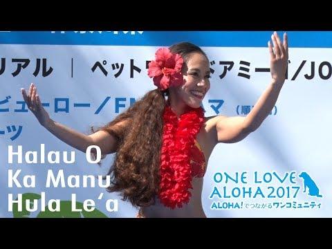 Halau O Ka Manu Hula Lea Digest   One Love Aloha 2017