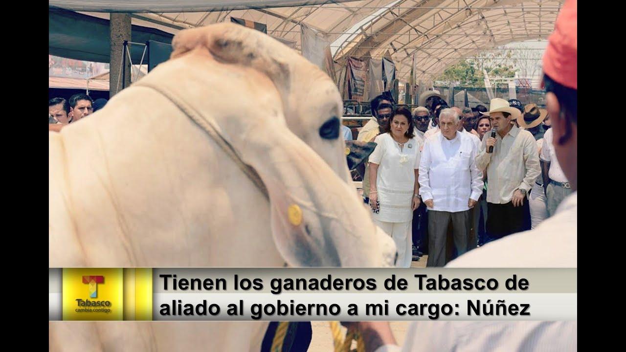 stand ganadero feria tabasco 2014