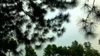 SUBIR SEN song_Saradin Tomai Vebe   সারাদিন তোমা�