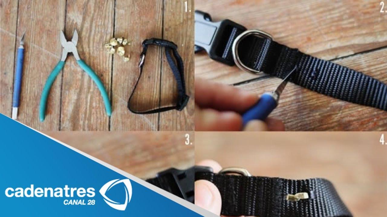 Cómo hacer un collar para perro