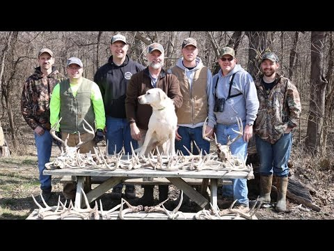 Antler Dog Training And Shed Hunting - The Management Advantage #85