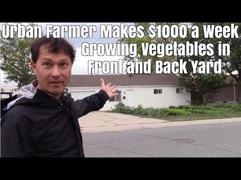 Urban Farmer Makes $1000 a Week Growing Vegetables in Rental