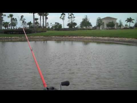 Bass Fishing With A New Stick