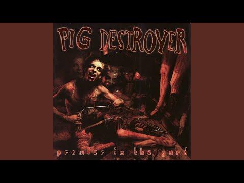 pig destroyer scatology homework