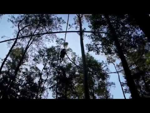 EcoZip® By Ecoline Tree Based Rollercoaster Zip Line System