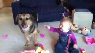 Смешные мылыш и собака/малыш хохочет/прикол на ютуб