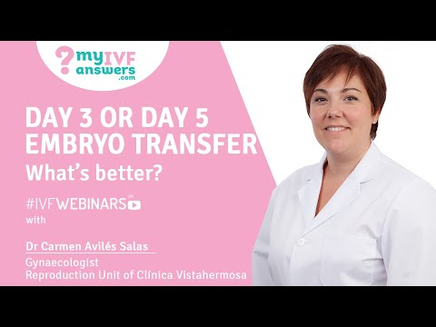 Day 3 or day 5 embryo transfer - what's better   EggDonationFriends com