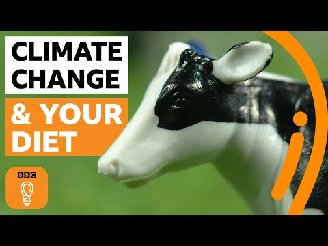 What if everyone in the world went vegan?   BBC Ideas