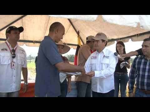 Piscicultores agradecen 200 toneladas de alimento para for Alimento para cachamas