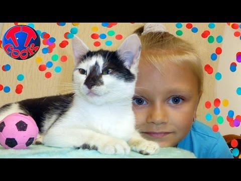 Я ЛЮБЛЮ Котят Входит и Выходит Игры с котятами Видео для детей