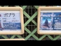 東武動物公園公式  zooっと友達  YouTube Live の動画、YouTube動画。