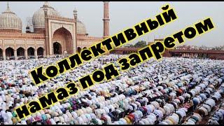 Почему Авицена запрещал коллективный намаз в мечети