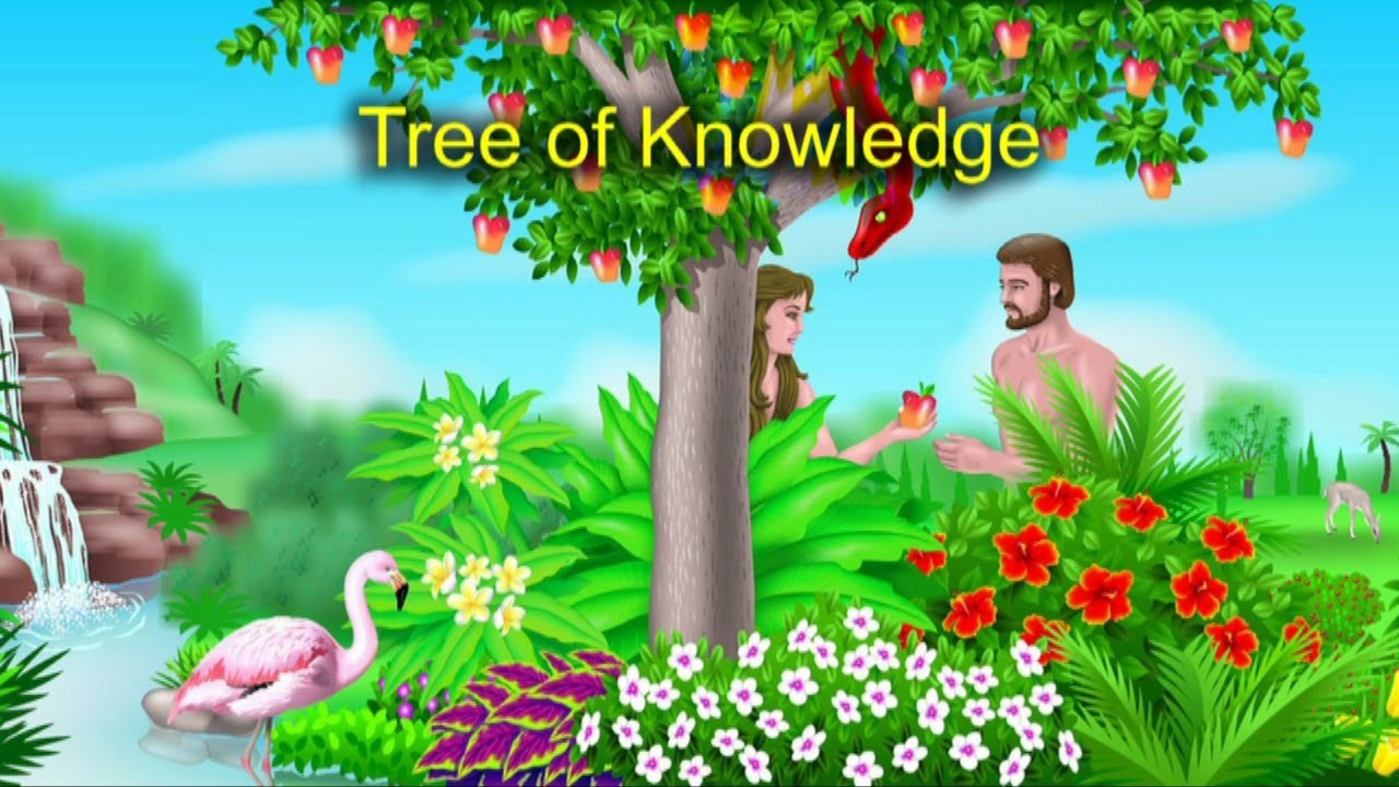 the tree of knowledge and the tree of life youtube