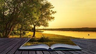 Música Instrumental Relajante para Estudiar y Concentrarse, Trabajar Alegre, Leer, Relajarse