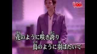 BREAKERZ - Tsukiyo no itazura no mahou ( KARAOKE ) instrumental ver...
