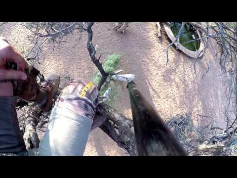 Violent Spear Kill on Monster Wart Hog