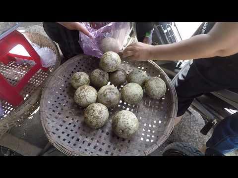 DẠO MỘT VÒNG ĐƯỜNG PHỐ TRÀ VINH NGÀY NAY | Vietnam travel guide