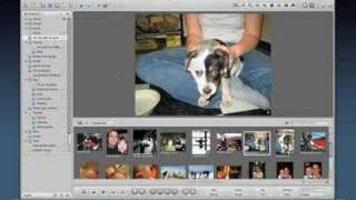 Apple Aperture Tutorial