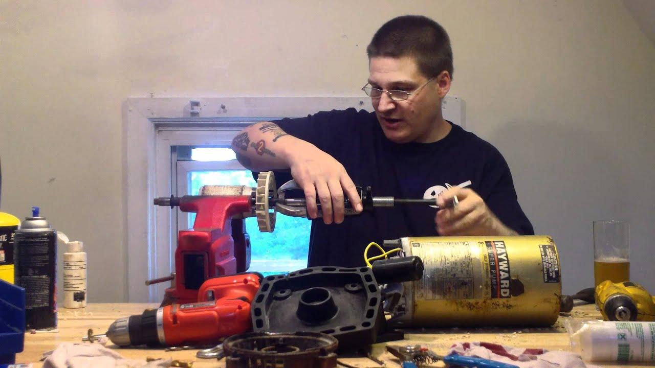 AO Smith Pool Pump Motor Motor Bearings Kit  YouTube